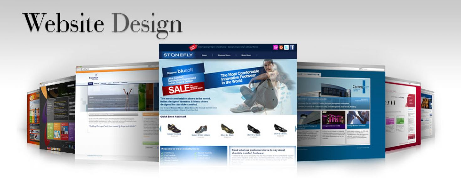 Website designing, banner designing in delhi starting at only 700