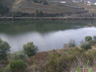 bords de riviér  Douro Vinhateiro